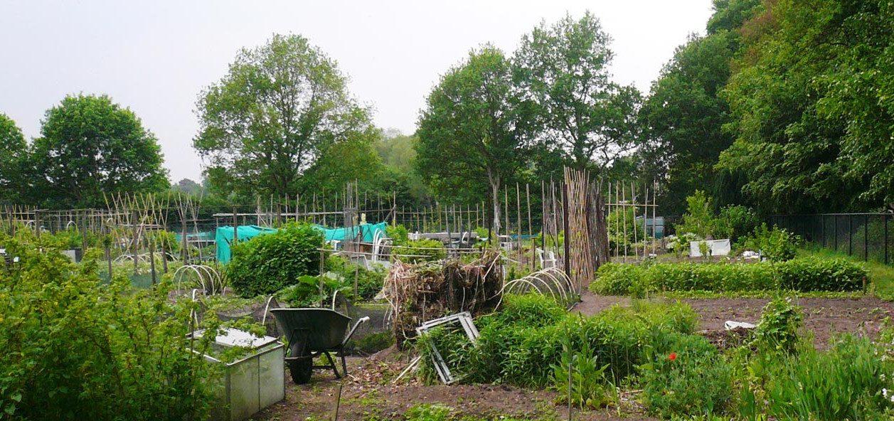 De Tuinvereniging