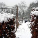 doorkijkje in de wintertuin